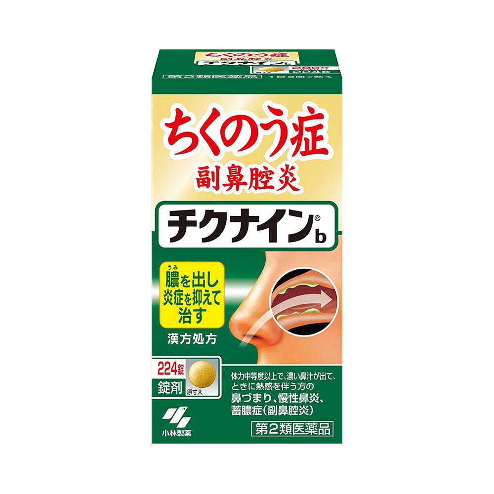 치크나인b 비염약 정타입
